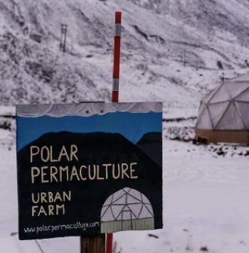 la permaculture en hiver - urban farm