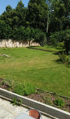 les_nuisibles_jardin_avant