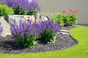 Des minéraux pour pailler le jardin
