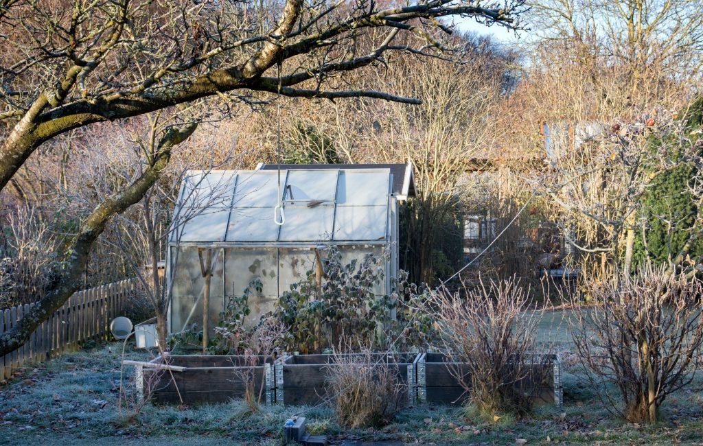 La permaculture même en hiver